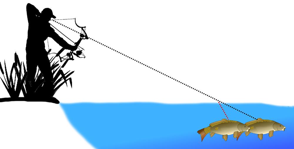bowfishing arrows