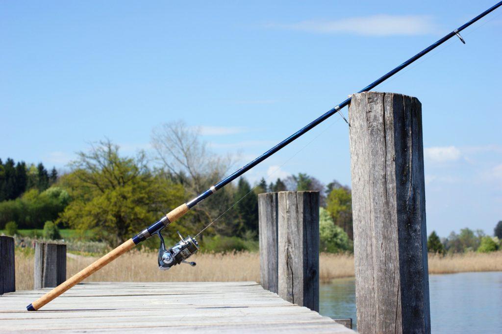 fishing rod 1